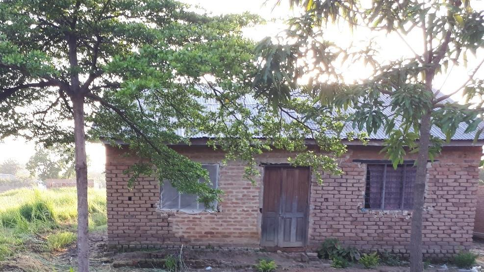 A typical example of improved housing beside a mosquito-producing rice field in rural Tanzania, constructed using bricks, timber and iron sheeting plus netting screens fitted over the windows.